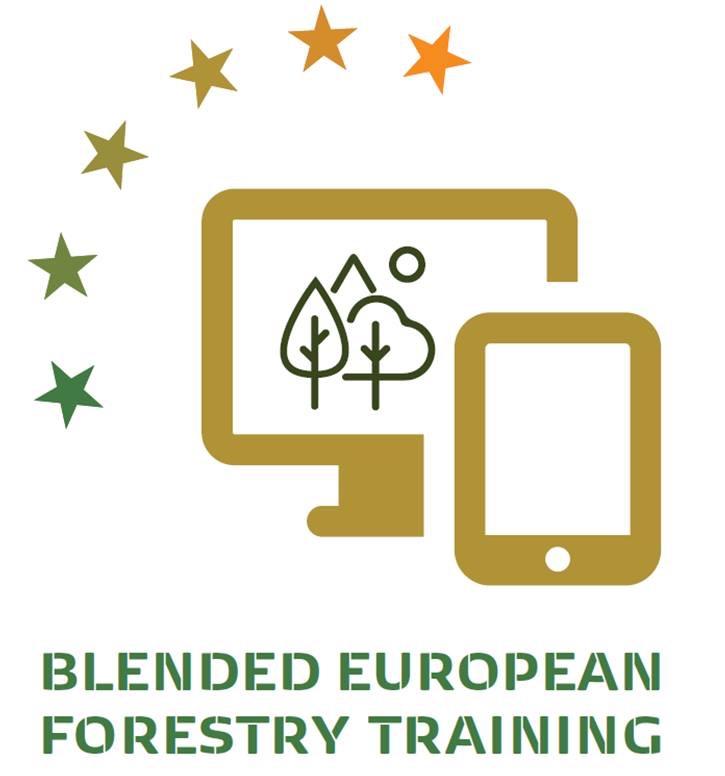 Blended European Forestry Training - Arbeiten auf Windwurf- bzw. Schneebruchflächen - BFW
